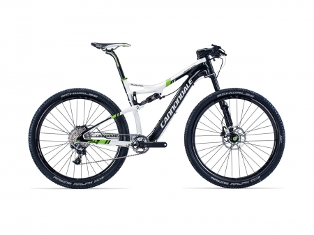 Scalpel 29 Carbon Team